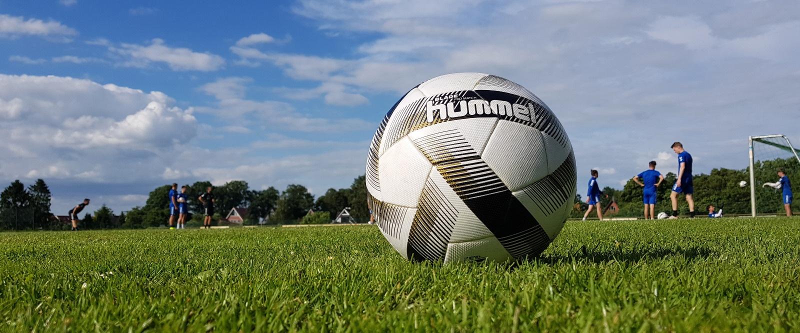 VfB kehrt ins Training zurück